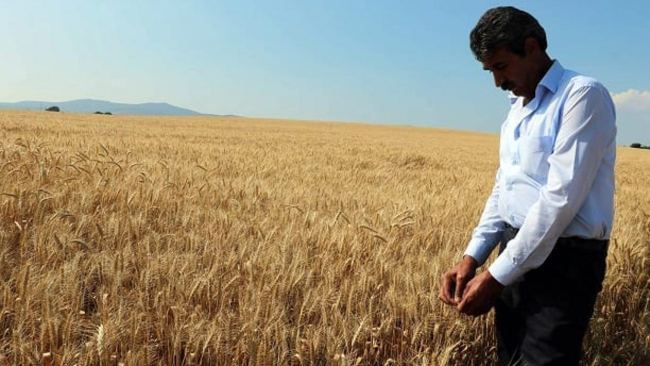 18 yılda çiftçinin borcu 72 kat attı: 180 milyar liraya ulaştı