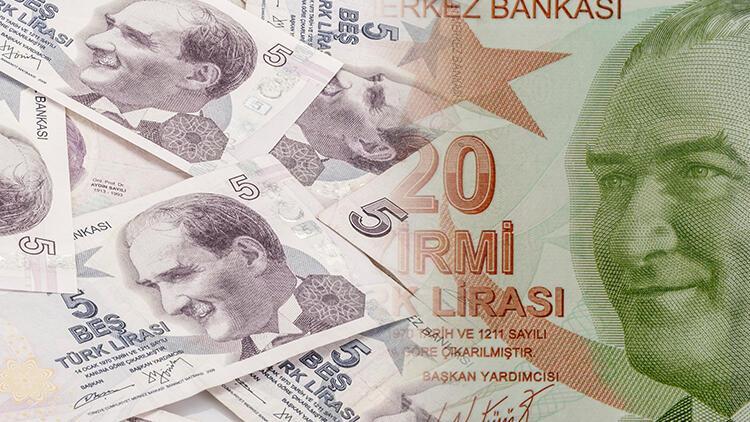 20 TL ve 5 TL'lik banknotlarda değişiklik