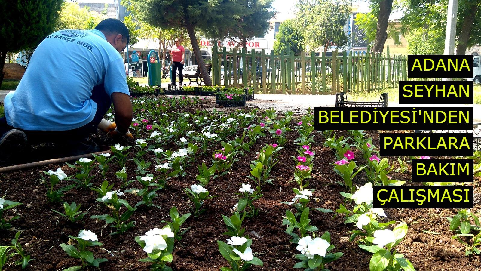 Adana Seyhan Belediyesi'nden parklara bakım çalışması