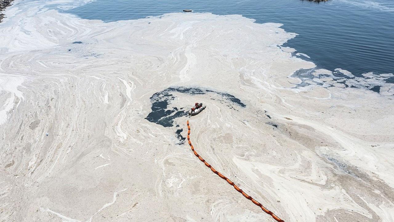 Akdeniz için müsilaj uyarısı: Kahverengileşiyor