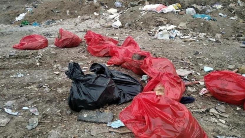 Ankara'da molozların arasında 20 köpek ölüsü bulundu