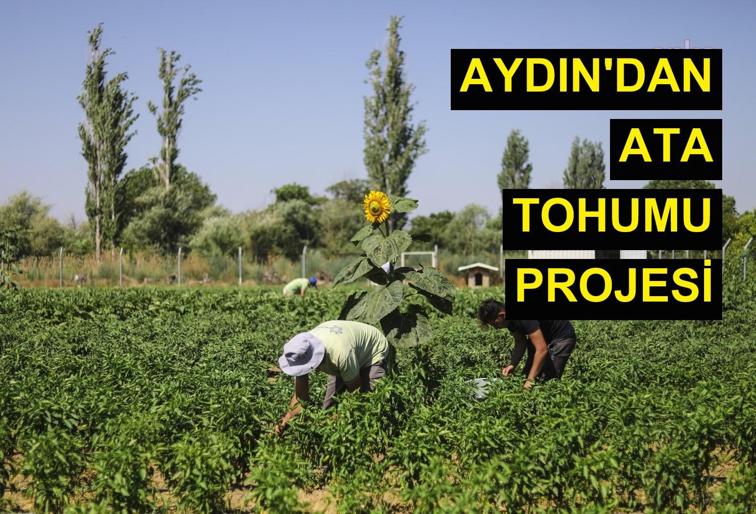 Aydın'dan Ata Tohumu projesi