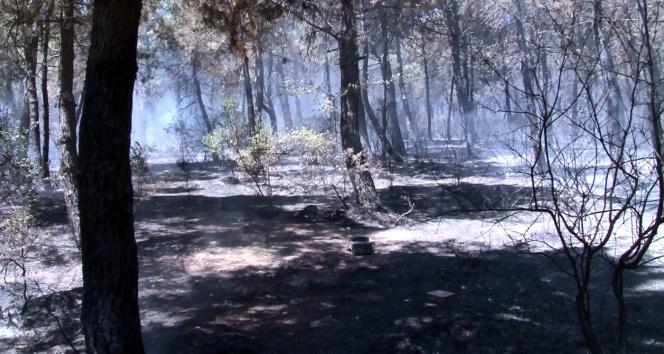 Aydos Ormanında çıkan yangın kontrol altına alındı