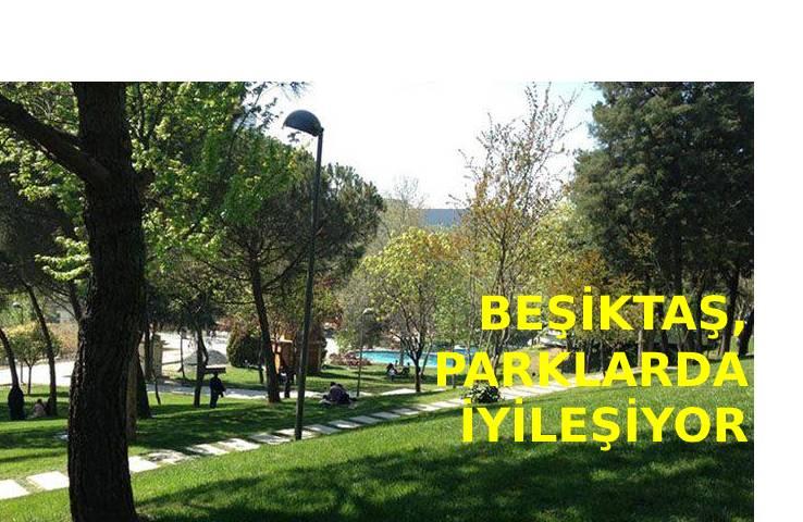 Beşiktaş, parklarda iyileşiyor