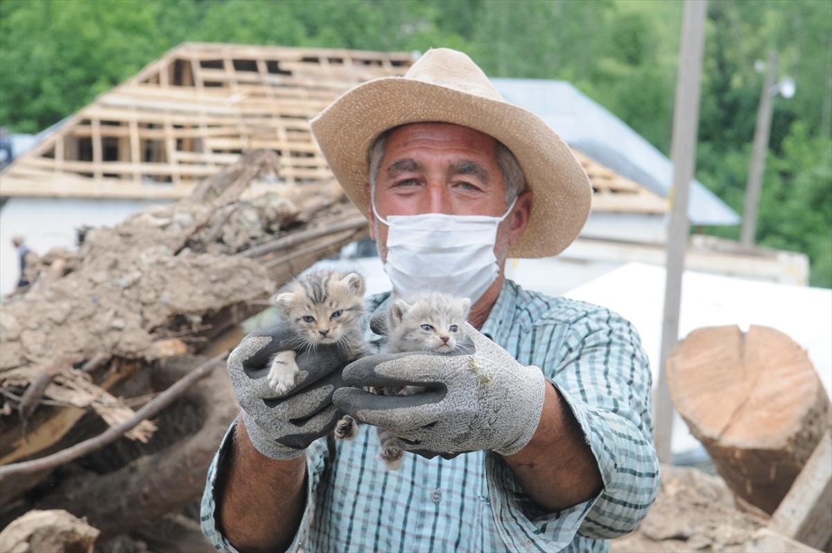 Bingöl'deki depremden 5 gün sonra 2 kedi yavrusu enkazdan sağ çıkarıldı