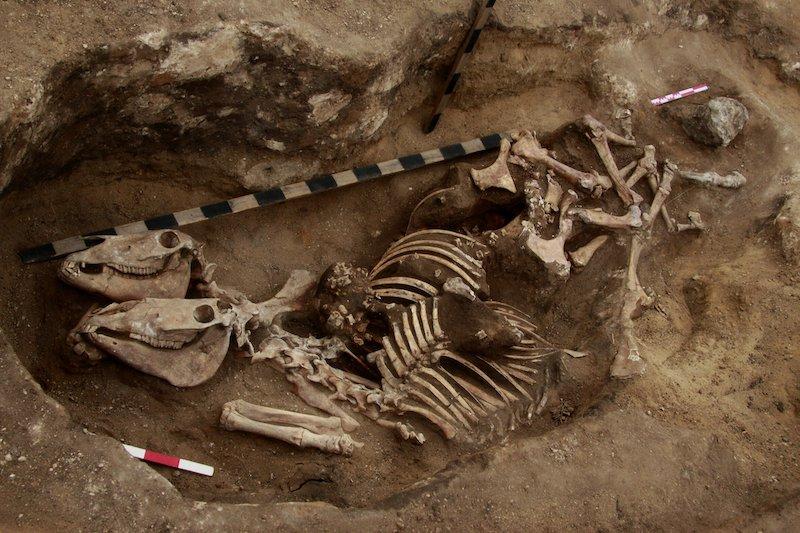 Biniciliğe dair en eski kanıt Kazakistan'da keşfedildi