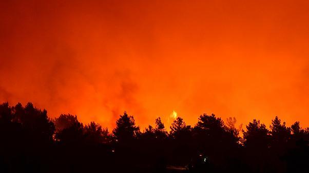 Çanakkale'deki orman yangını sürüyor: Havadan müdahale yeniden başladı