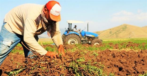 CHP'li vekilin raporu: Tarımda ithalat 2 katına çıkacak