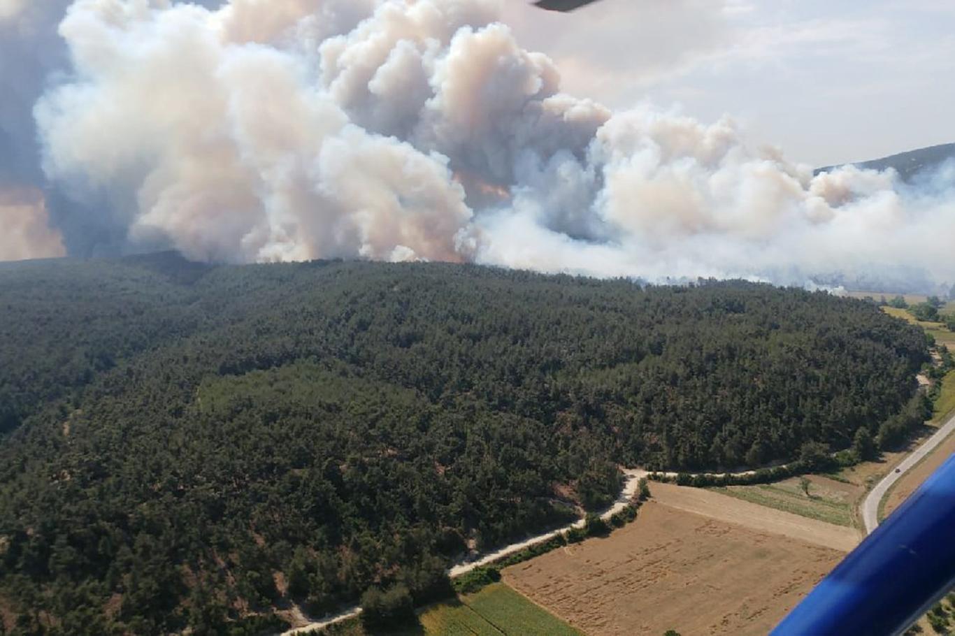 Gelibolu Yarımadası'ndaki orman yangını sürüyor