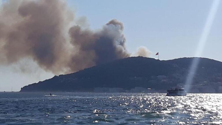 Heybeliada'daki orman yangınıyla ilgili bir kişi adliyeye sevk edildi, 2 kişi serbest bırakıldı