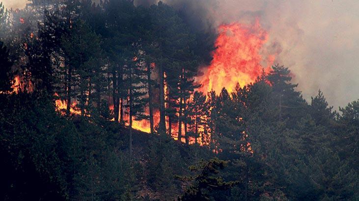 İstanbul'da 2020 yılının 8 ayında 13 bin 804 yangın çıktı