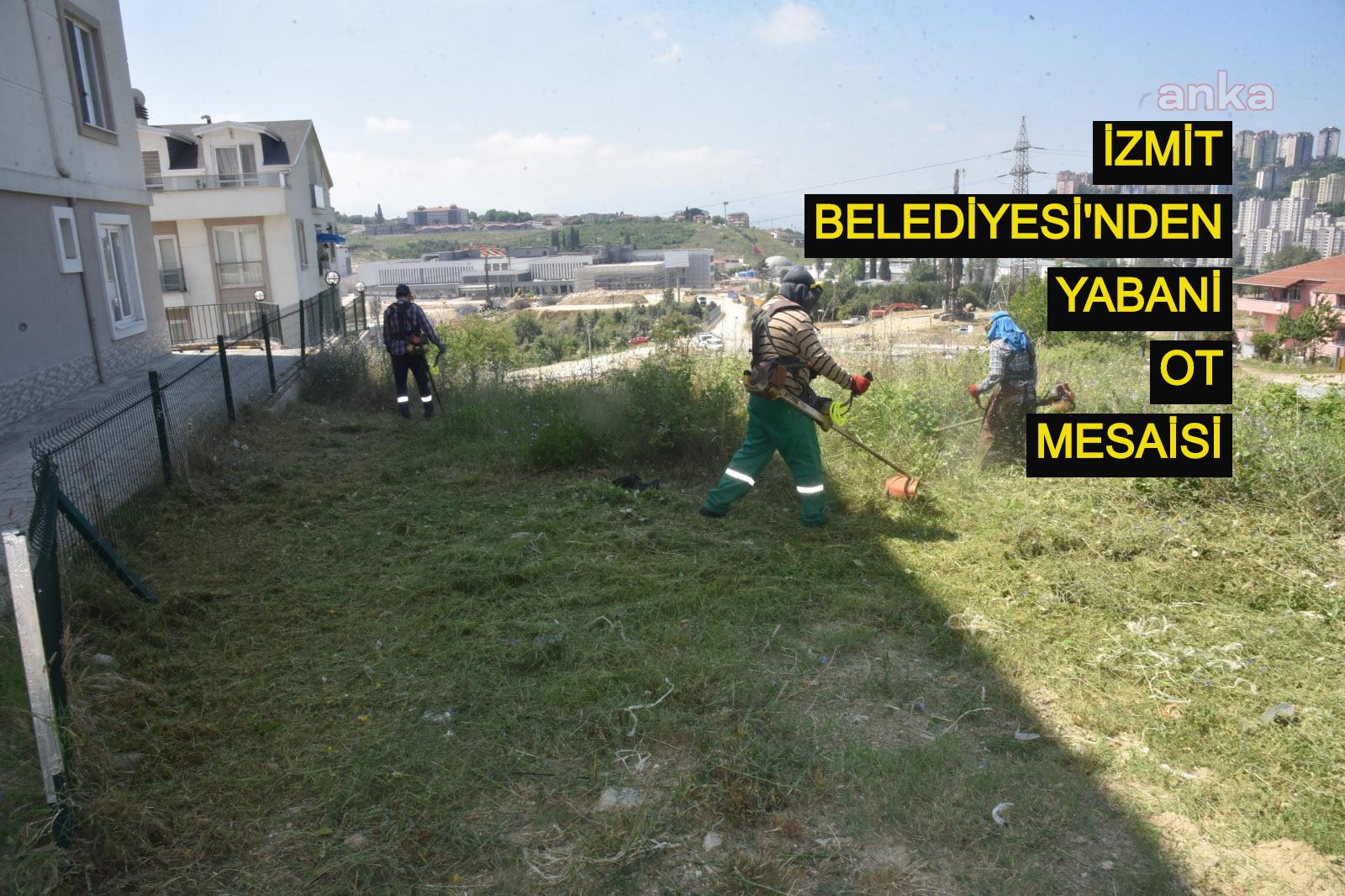 İzmit Belediyesi'nden yabani ot mesaisi