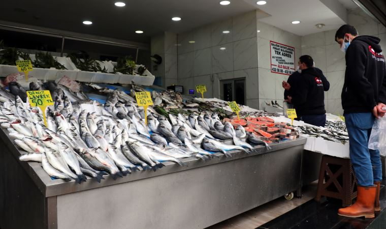 Karadeniz'de bir ilk: Balıklar tersine göçe başladı