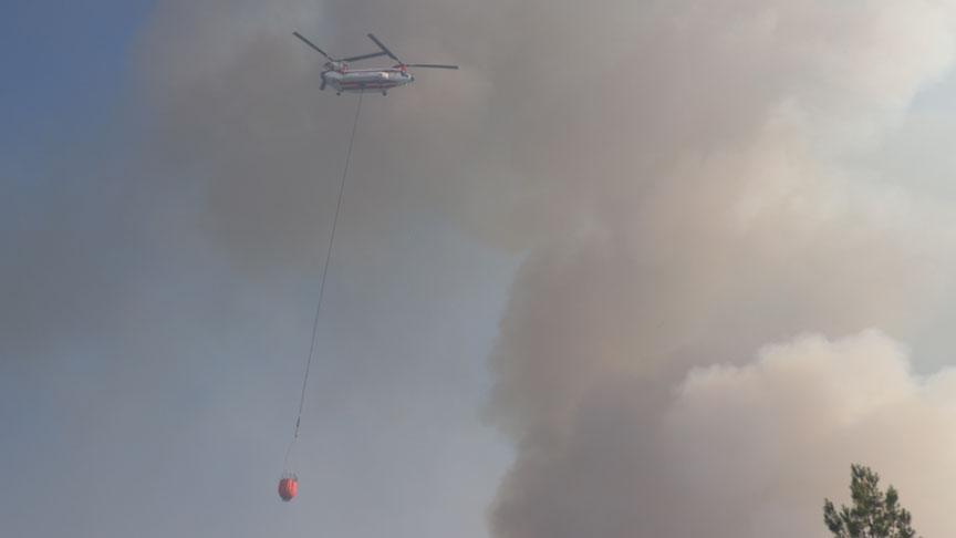 Kozan ve Aladağ'daki yangın henüz kontrol altına alınamadı