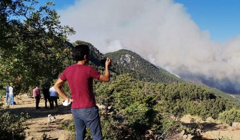 Mersin'deki orman yangınına havadan ve karadan müdahale ediliyor