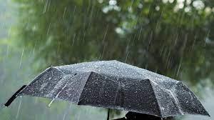 Meteoroloji'den bölge bölge yağış uyarısı