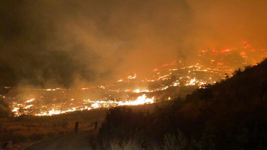 Muğla'da orman yangını: Söndürme çalışmaları devam ediyor