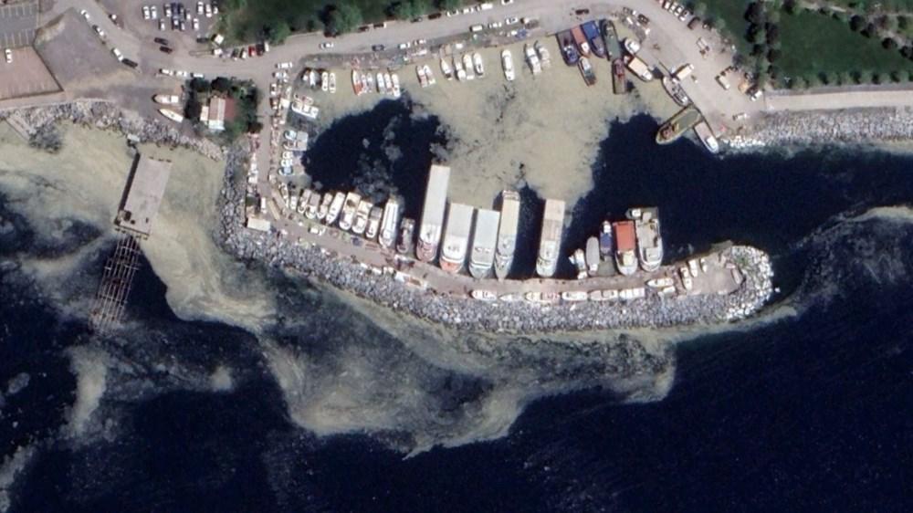 Müsilaj uyarısı: 'Marmara'daki boyutta olmasa da Akdeniz de risk altında'