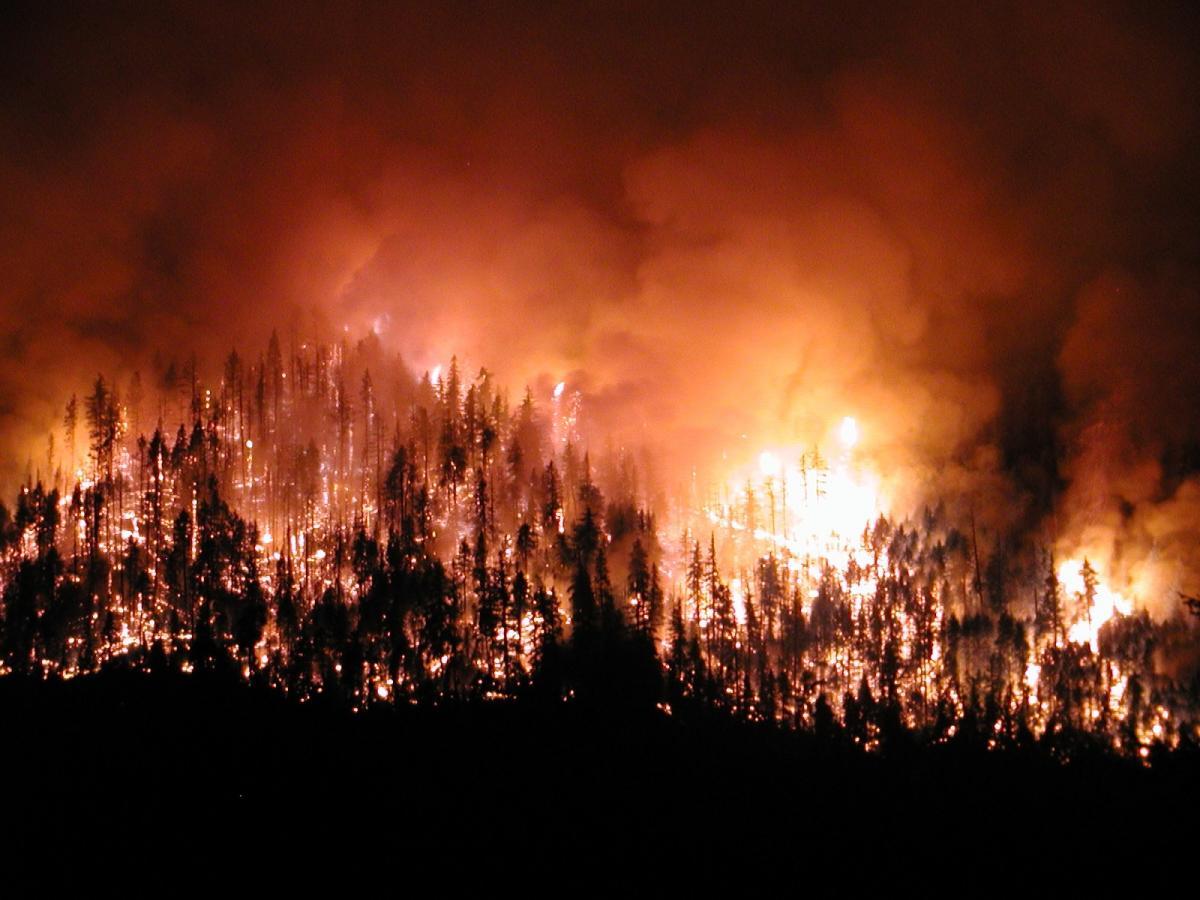 Nefessiz kaldık: Türkiye'de dün 20 orman yangını çıktı