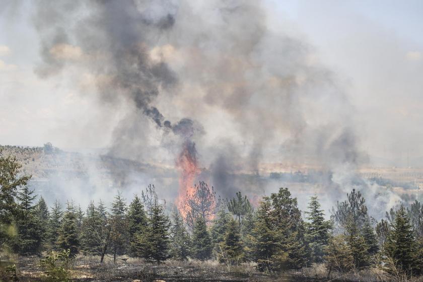 Orman yangını sonrası kundaklama şüphesiyle 6 kişi gözaltına alındı