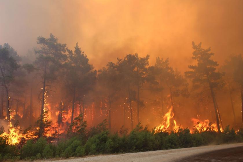 Orman yangınlarında 10. gün: 5 ildeki 12 yangına müdahale devam ediyor