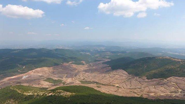 """""""Kaz Dağları'nda 3.5 milyon ağaç kesilecek"""""""