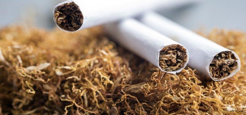Sarma sigara yasağı Resmi Gazete'de yayımlandı