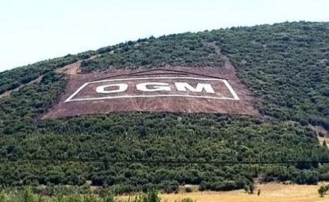 Sayıştay raporu: Orman Genel Müdürlüğü envanter bile çıkarmamış