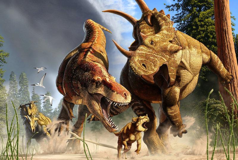 T. Rex'in uzun bacakları neden evrim geçirdi?