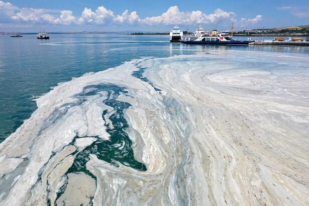 TBMM Müsilaj Komisyonu: İstanbul'un Marmara'ya bıraktığı kirlilik yüzde 76
