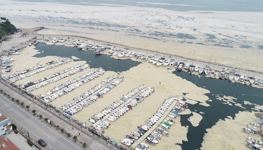 TBMM'ye sunuldu: Marmara Denizi'ni 'kurtaracak' rapor