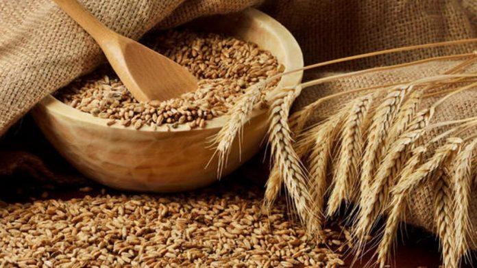 TÜİK: Bu yıl tahıl ve sebze üretimi azalacak