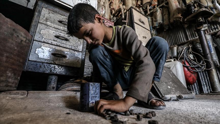 Türkiye'de çocuk işçi gerçeği: Bakanlığın ulaştığı sayı 12 bin 457