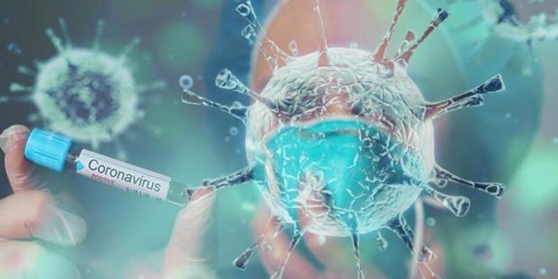 Türkiye'de koronavirüs nedeniyle 19 kişi hayatını kaybetti, 1053 tanı kondu