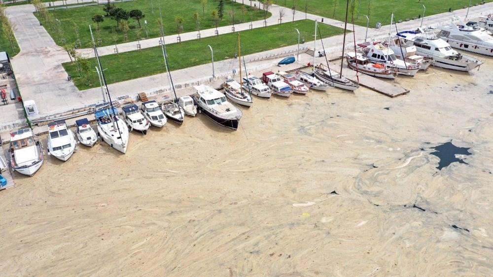 Türkiye'nin deniz salyası krizi, ABD basınının gündeminde