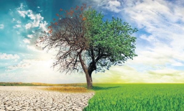 Ülkede kuraklık tehlikeli seviyeye ulaştı