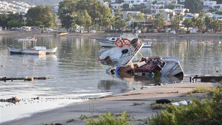 Uzmanlar tsunami tehlikesine karşı sürüyor