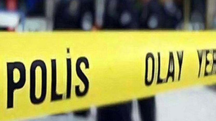 Vahşet: 9 yavru köpek yakılarak öldürüldü